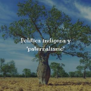Política indígena y paternalismo